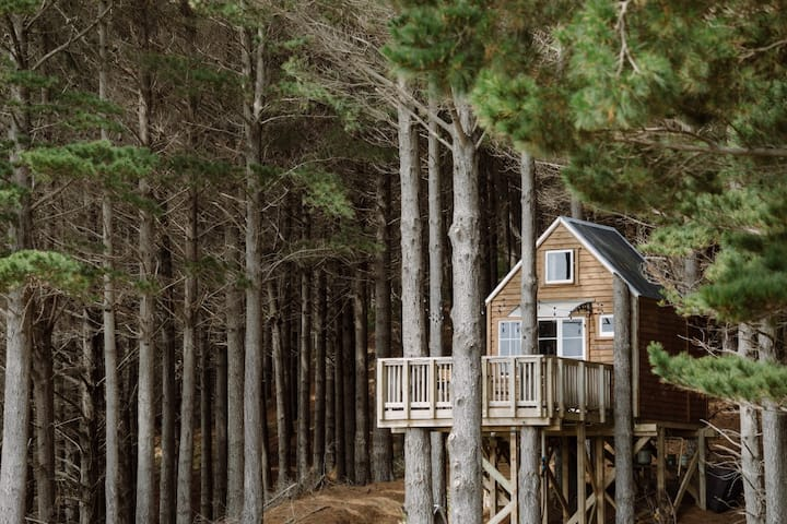 Raglan Treehouse in the Woods with Outdoor Bath