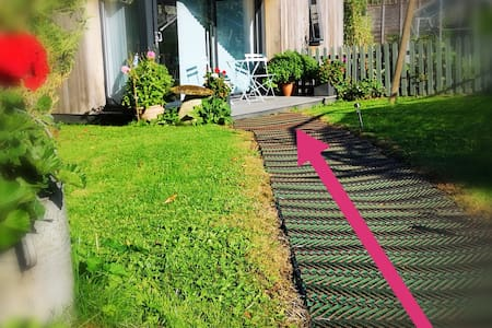 Path across lawn to Studio