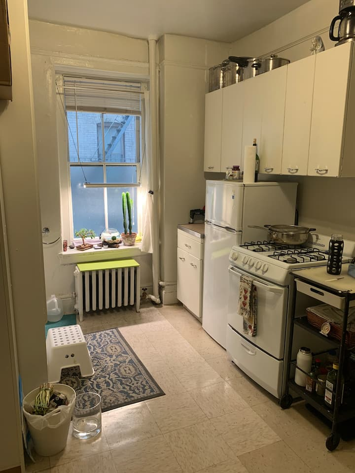 Great studio apartment located in midtown east