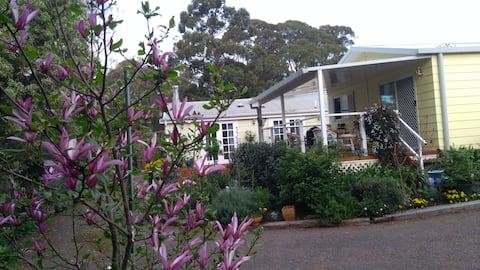 Best Exotic Magnolia Cottage
