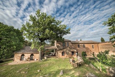 Casa al Gianni - Olmo