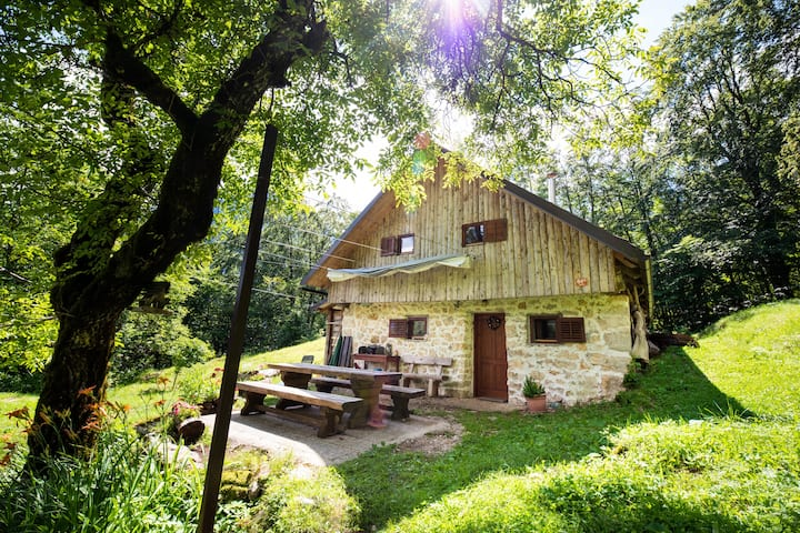 Miha Lodge in the woods with magnificent view