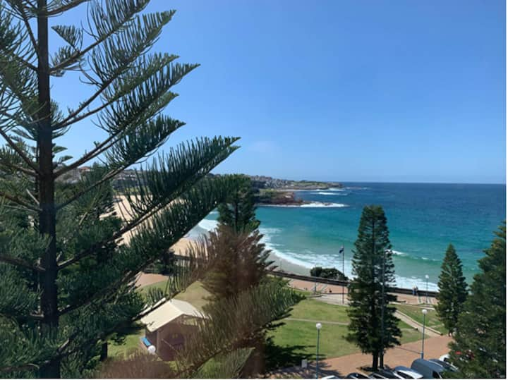 Coogee View