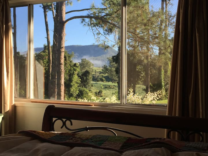 Little River Bach - pet friendly cabin on the Mary
