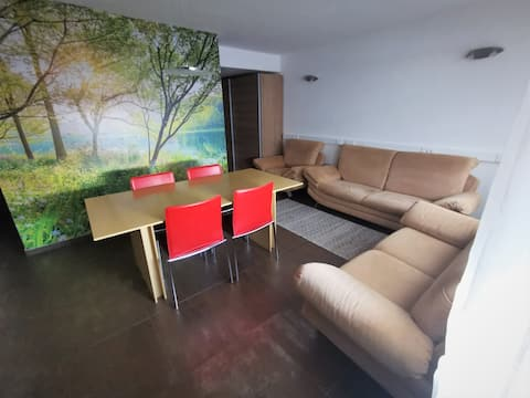 Luxury, large family apartment, private entrance