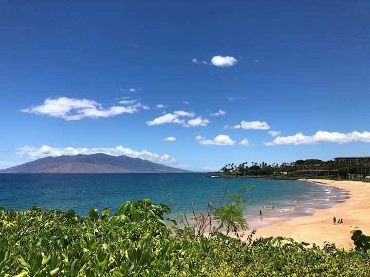 Wailea Large Ocean View Condo