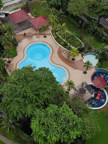 Room for Rent in Terrace House in Siglap Singapore