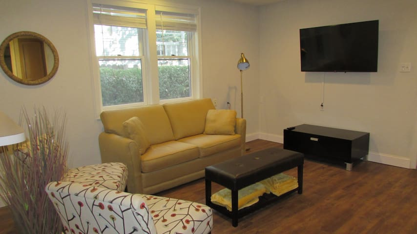 Living Room with 50 inch smart-tv