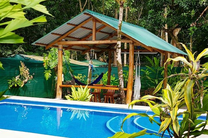 Cabina Amarilla with a Pool, Beach, wifi & more!