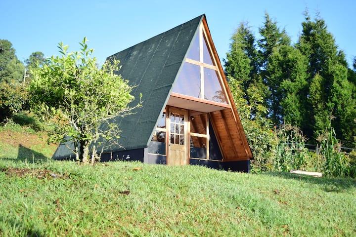 La Cabaña del Bosque 2