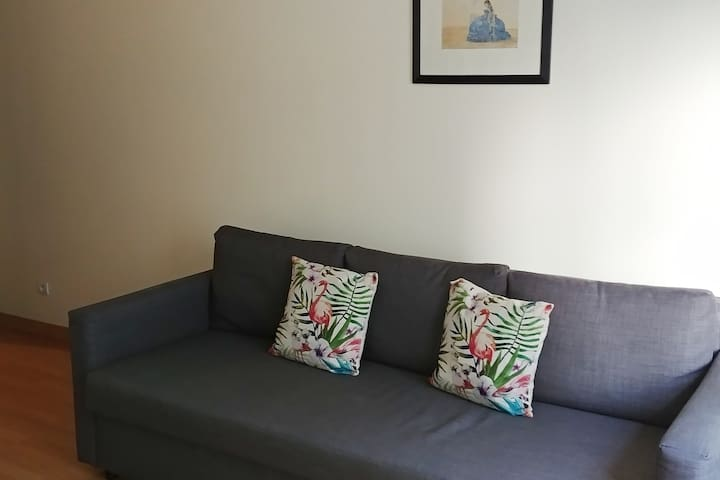 Comfy pull-out sofa