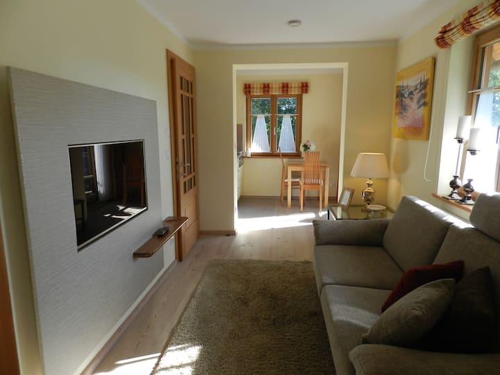 Hochwertig ausgestattetes Apartment mit Wohnküche