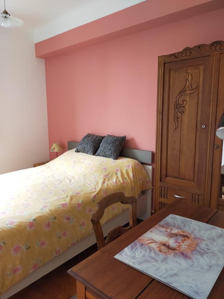 Une chambre avec un lit double