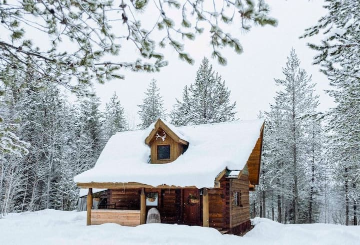 Violet Cabin ~ 10 min from xcountry ski trails!