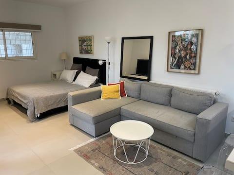迦太基宽敞的现代单间公寓