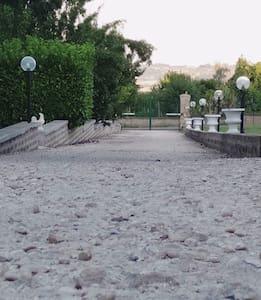 Stradone di accesso alla villa con illuminazione sia a destra che a sinistra