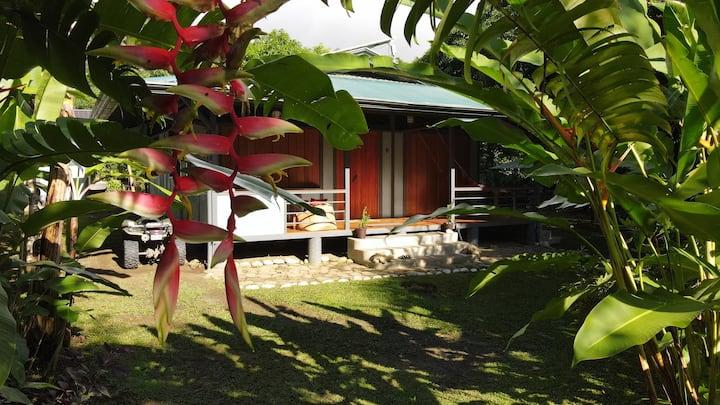 La Casita: Osa wildlife and beach house