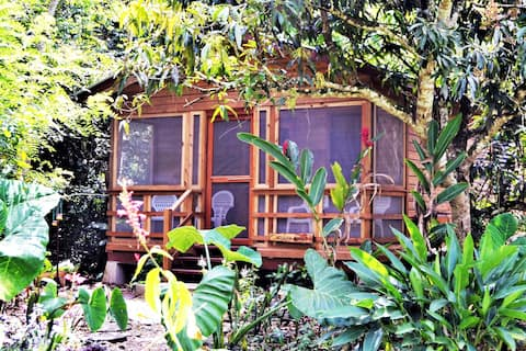 Iguana Roost  Tourism Gold Standard Equipped Cabin