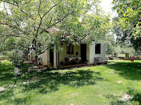 Country Guest House (1 Bedroom 3 beds)