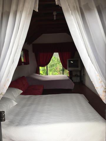 Excelente iluminación y ventilación en las habitaciones.