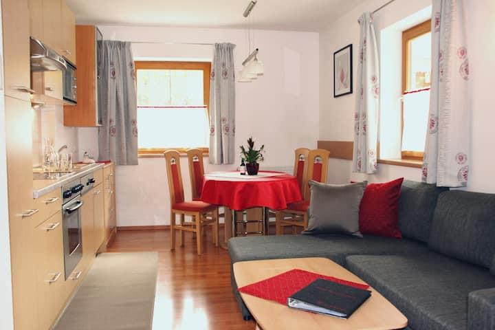 Haus Hetzenauer, Wohnung Nr.2