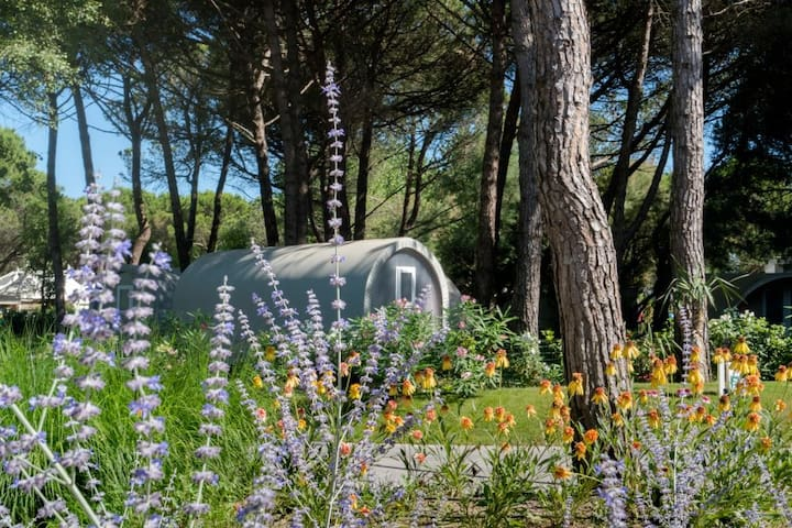Smart tent a stone's throw from the beach