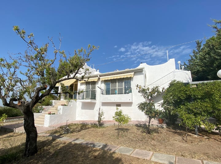 Villa with garden and view on olive trees and sea