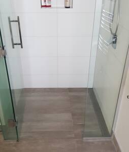Shower door (2-way swing)