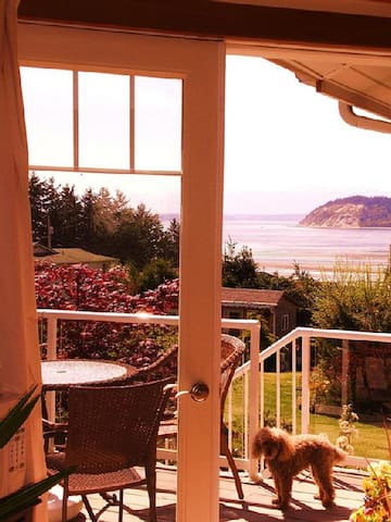 View through the Library's French doors to  Puget Sound's Double Bluff, Olympic Mountains, shipping lanes and Useless Bay.