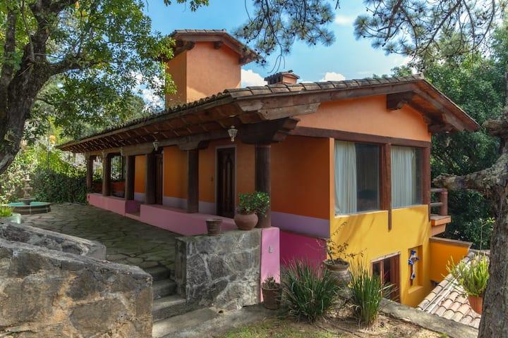 Grande y Bella Casa Colonial, Vista al Bosque