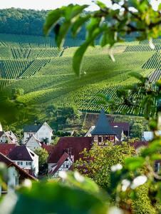 Loft room in beautiful wine village