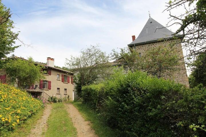 Maison au coeur des vignes du Beaujolais