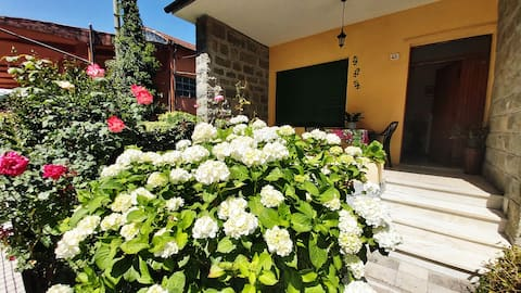 Single house with garden