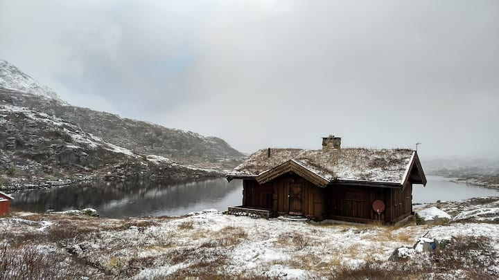 #holmevann1013moh: comfort in the highland