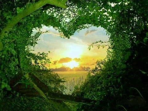 Gite au Coeur de la Nature
