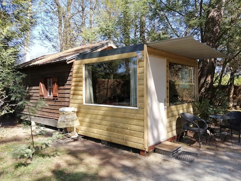 Chalet on wooded ground