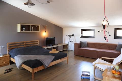 Studio Apartment at Vila Veselka Vis