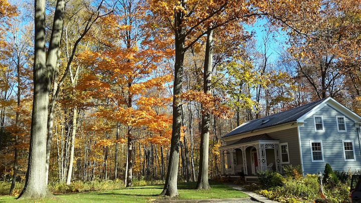 Buttonwood Bed and Breakfast