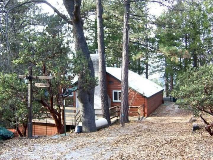 Cabin Den