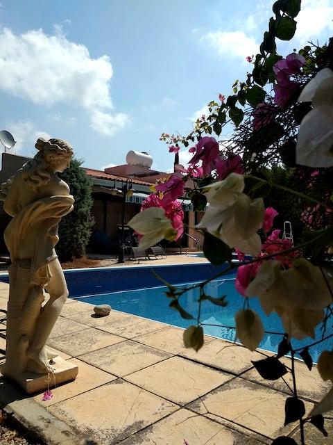 "2-bd luxury bungalow ""Dali"",Paphos,Coral Bay"