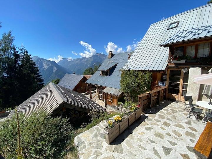 Gîte grande terrasse - 300m des pistes Alpe d'Huez