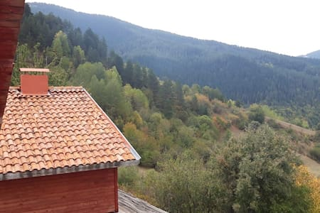 Chalet / House at Ilgaz Mountain