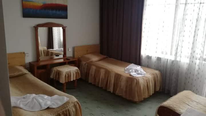 Guest House Grachenovi - Twin Room with Balcony
