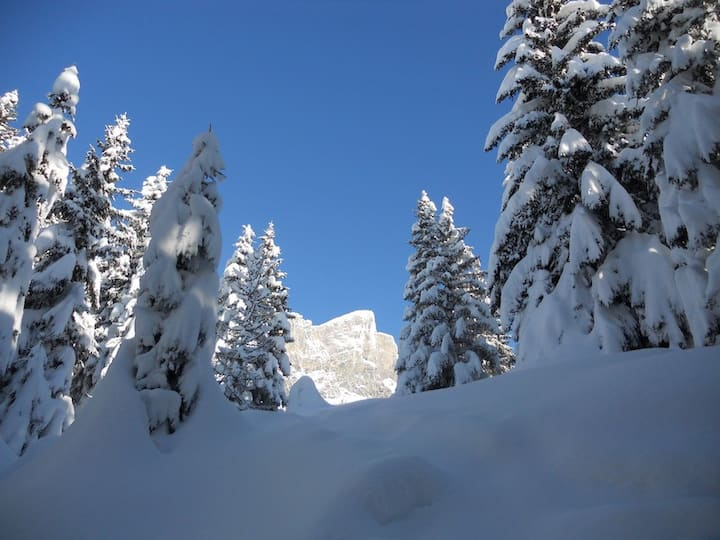 Servoz-Les Houches- Chamonix à 12kms.