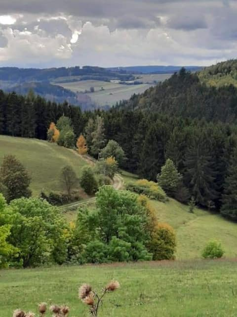 Idyllische Unterkunft im Thüringer Schiefergebirge