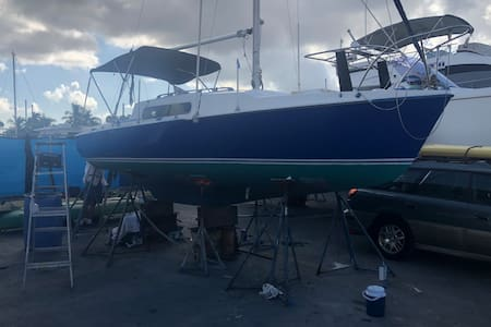 The sailing vessels GOD just got a new paint job and a new motor.  The rig is being fixed.  She charters for 100 an hour and rents for 85 a night
