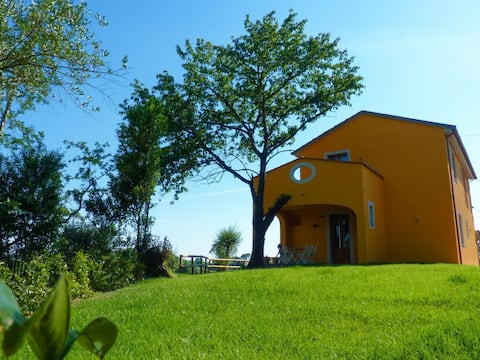 """""""Oleandro"""" Tuscan apartment on the vineyards"""