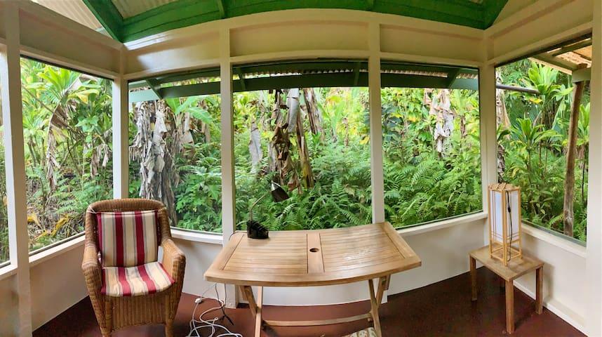 Banana Patch Cottage, a tiny, rainforest gem!
