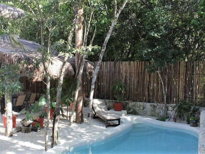 Jungle Loft w/Kitchen, TV, A/C & Pool