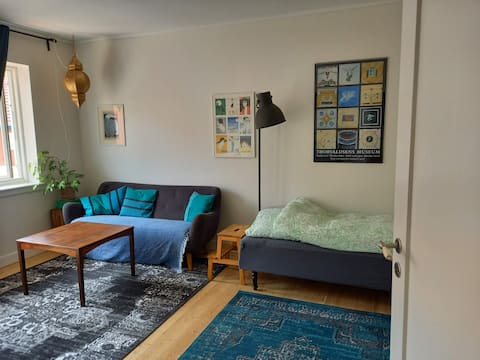 Room in nice and clean flat in quiet neighbourhood
